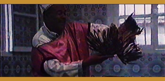 Rainbow Trance – Documentaire sur le mysticisme Gnaoua